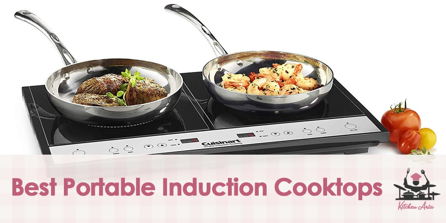 9 Best Portable Induction Cooktops in 2020